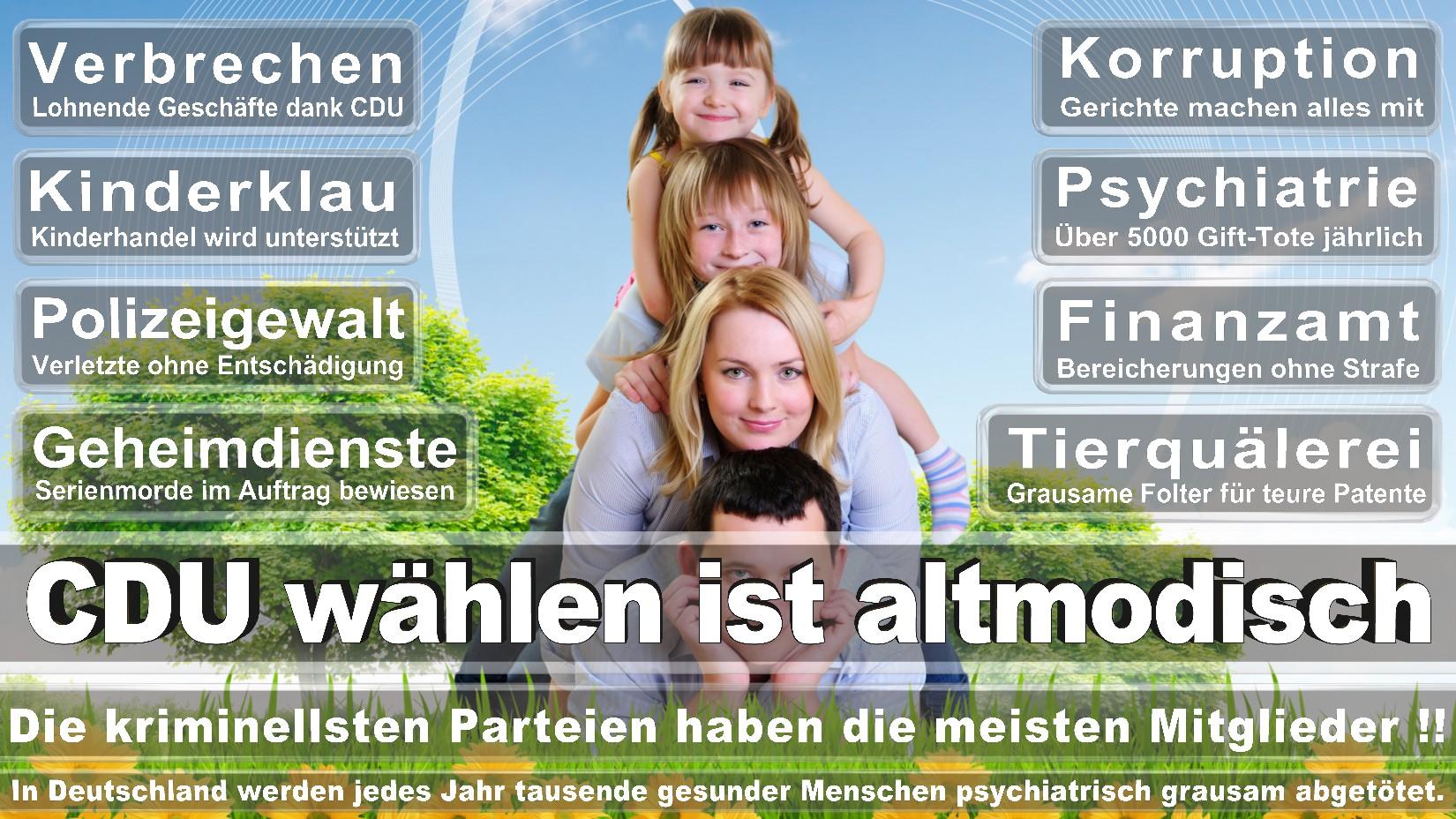 Angela-Merkel-CDU (19)