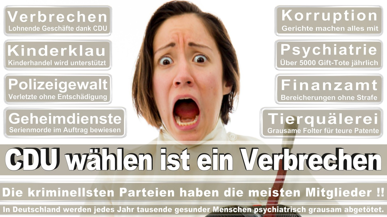 Angela-Merkel-Meme (10)
