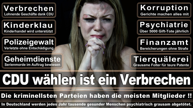 Angela-Merkel-Meme (106)