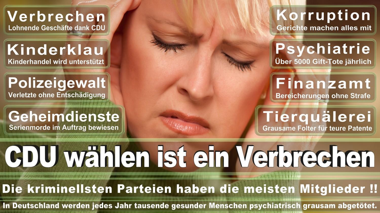 Angela-Merkel-Meme (112)
