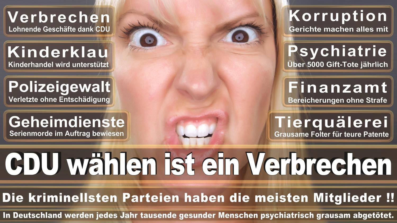 Angela-Merkel-Meme (114)