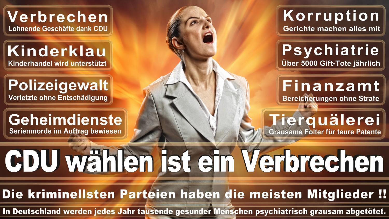 Angela-Merkel-Meme (116)