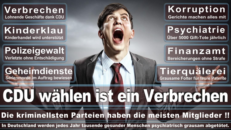 Angela-Merkel-Meme (117)