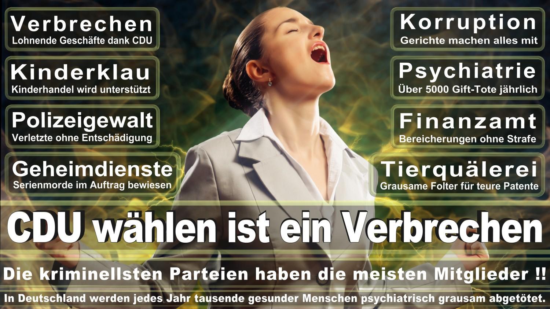Angela-Merkel-Meme (119)