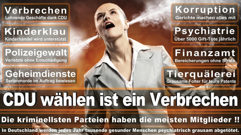 Angela-Merkel-Meme (122)