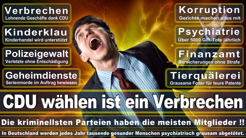 Angela-Merkel-Meme (125)