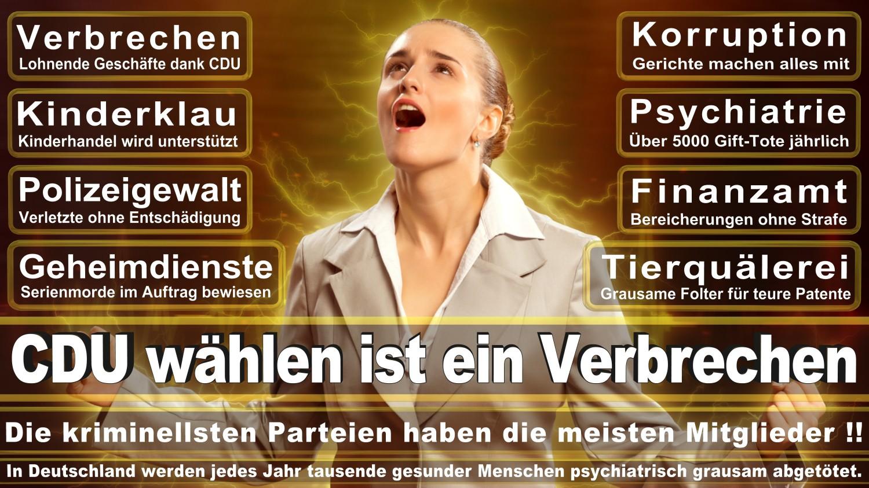 Angela-Merkel-Meme (130)