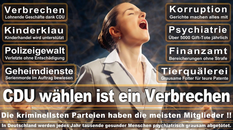 Angela-Merkel-Meme (132)