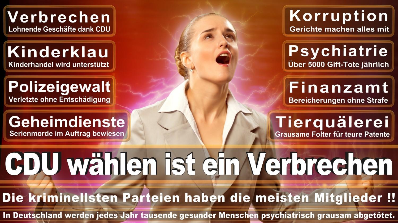 Angela-Merkel-Meme (133)
