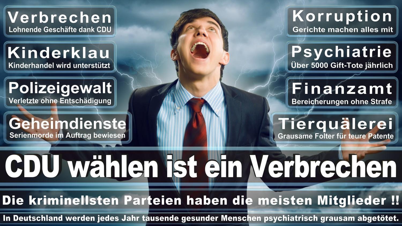 Angela-Merkel-Meme (136)