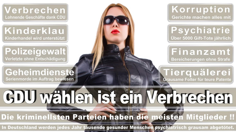 Angela-Merkel-Meme (14)