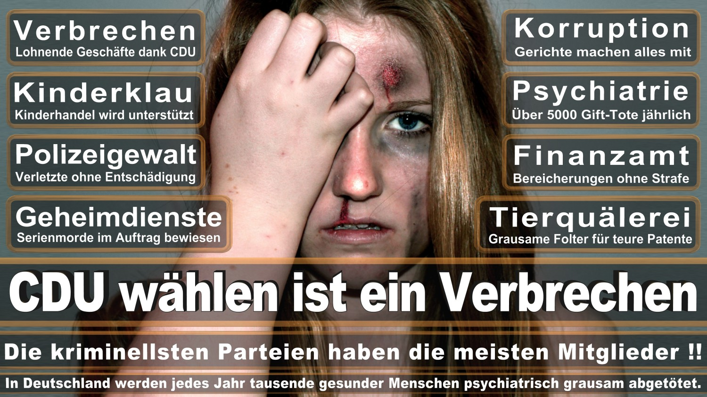 Angela-Merkel-Meme (141)