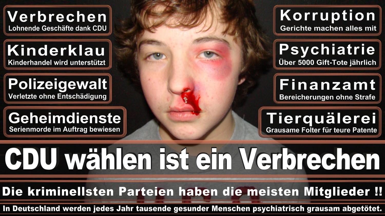 Angela-Merkel-Meme (142)