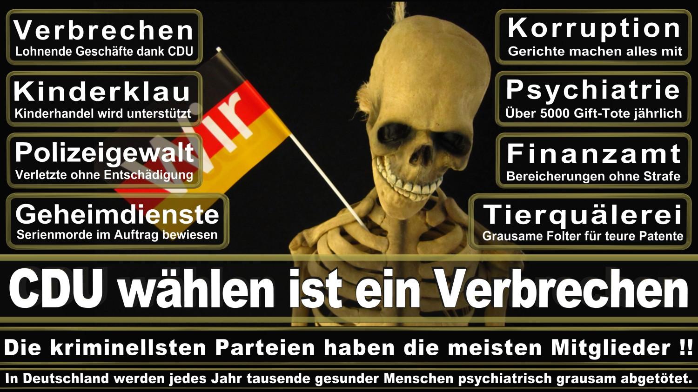 Angela-Merkel-Meme (145)