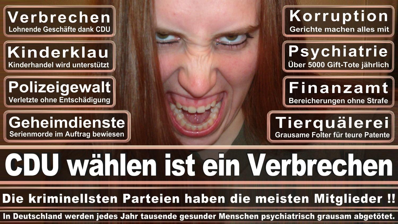 Angela-Merkel-Meme (146)