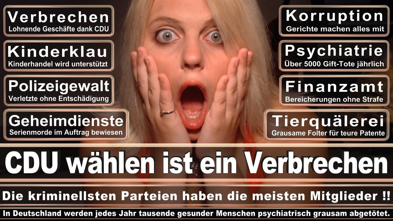 Angela-Merkel-Meme (149)