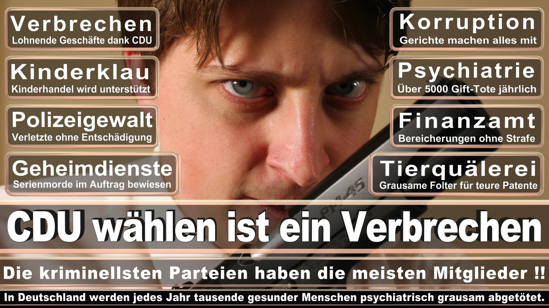 Angela-Merkel-Meme (150)