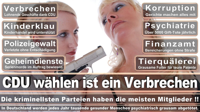 Angela-Merkel-Meme (151)