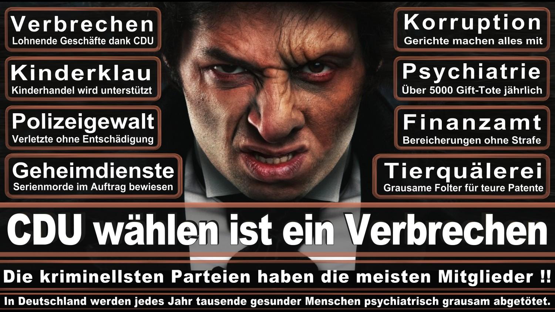 Angela-Merkel-Meme (155)