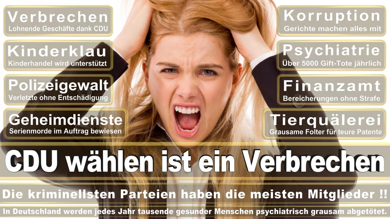 Angela-Merkel-Meme (16)