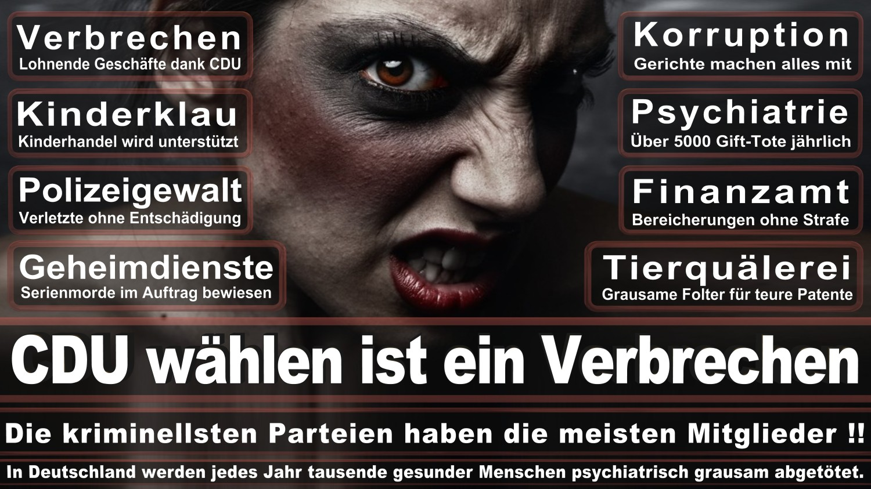 Angela-Merkel-Meme (161)