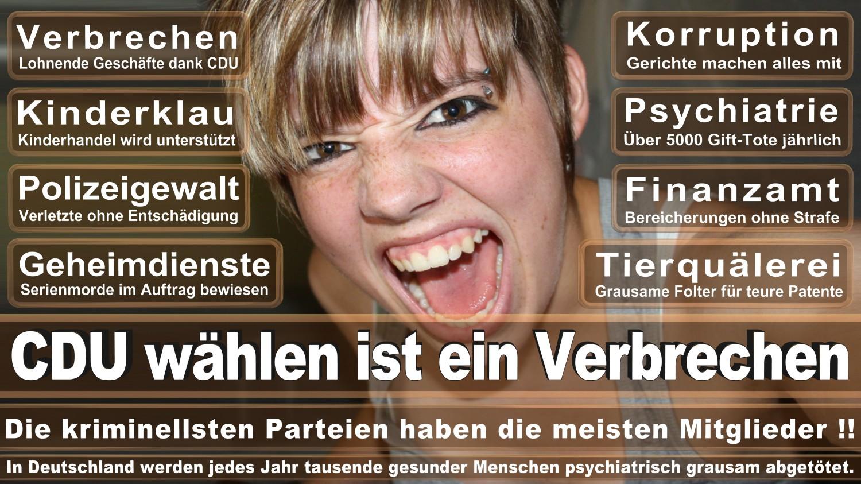 Angela-Merkel-Meme (163)