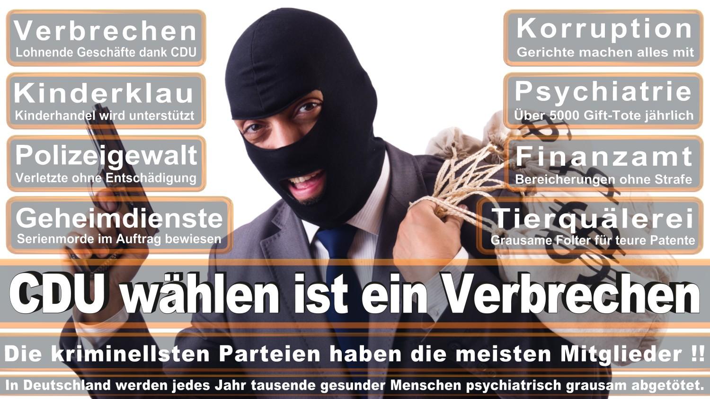 Angela-Merkel-Meme (170)