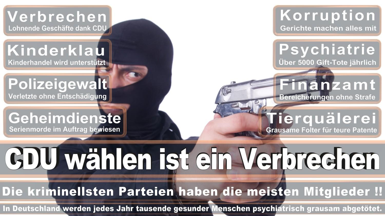 Angela-Merkel-Meme (174)