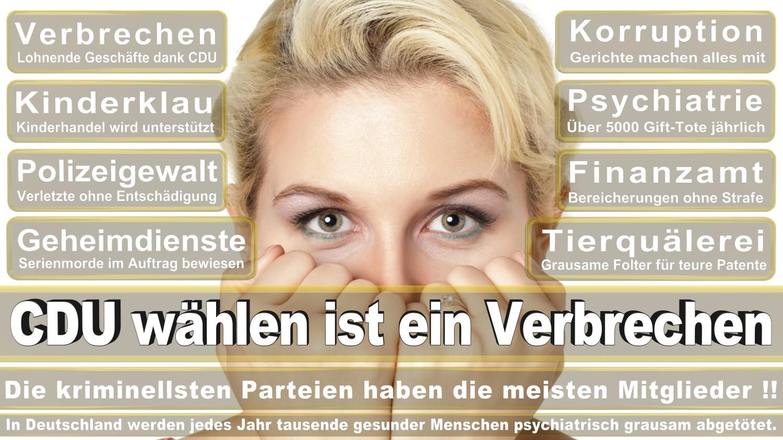 Angela-Merkel-Meme (18)