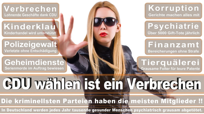 Angela-Merkel-Meme (19)