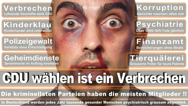 Angela-Merkel-Meme (194)