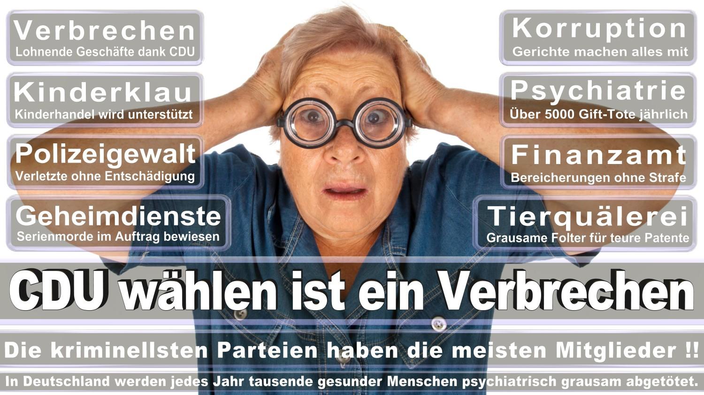 Angela-Merkel-Meme (196)