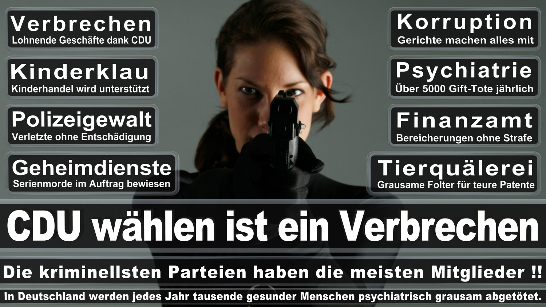 Angela-Merkel-Meme (2)