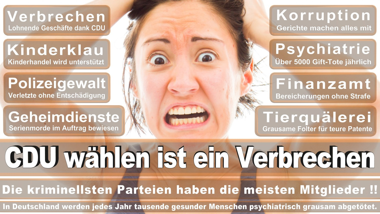 Angela-Merkel-Meme (20)