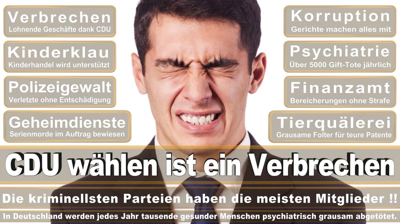 Angela-Merkel-Meme (21)