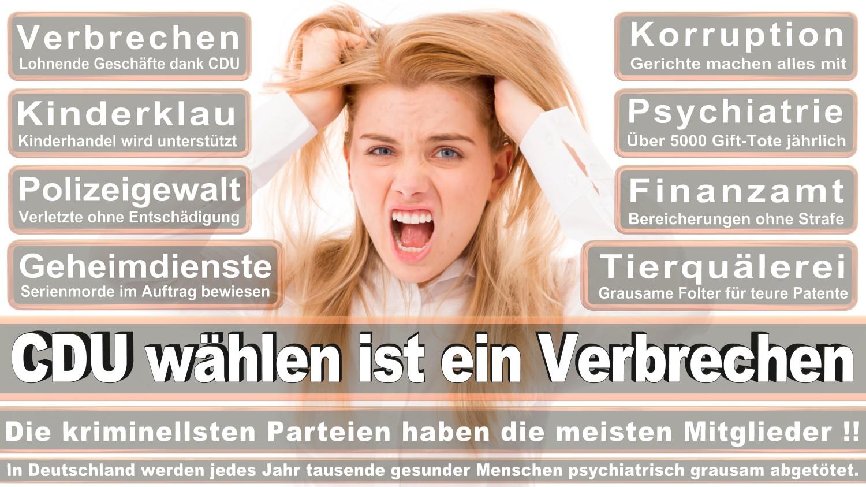 Angela-Merkel-Meme (210)