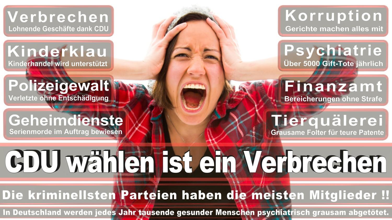 Angela-Merkel-Meme (212)