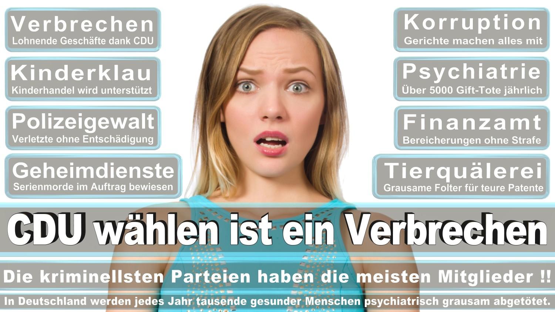 Angela-Merkel-Meme (214)