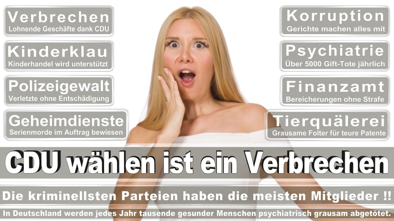 Angela-Merkel-Meme (215)