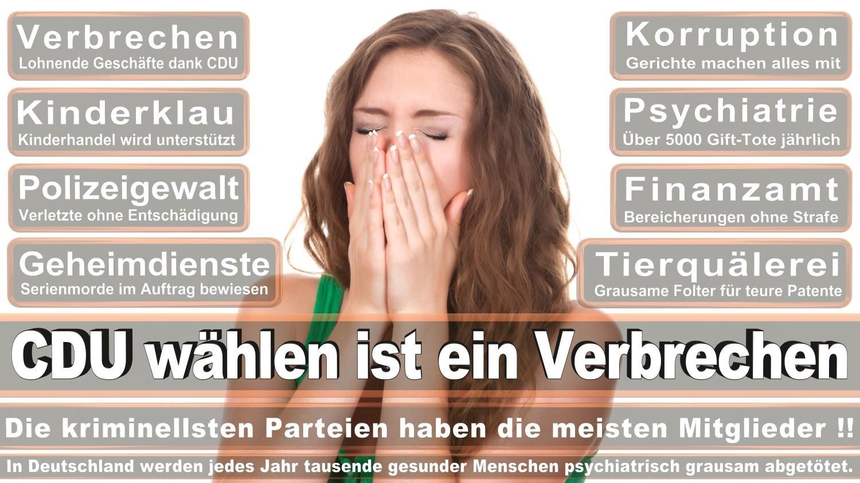 Angela-Merkel-Meme (217)