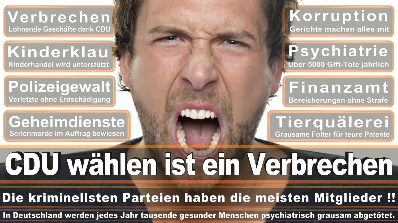 Angela-Merkel-Meme (219)
