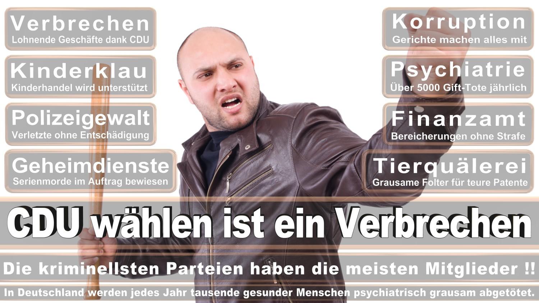 Angela-Merkel-Meme (233)