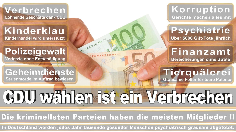 Angela-Merkel-Meme (234)
