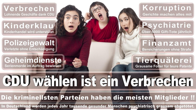Angela-Merkel-Meme (24)