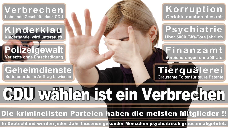 Angela-Merkel-Meme (241)