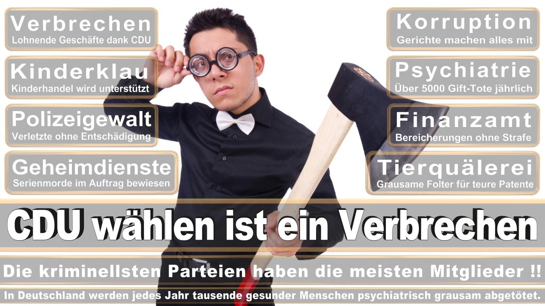 Angela-Merkel-Meme (242)
