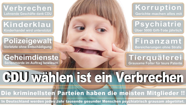 Angela-Merkel-Meme (243)