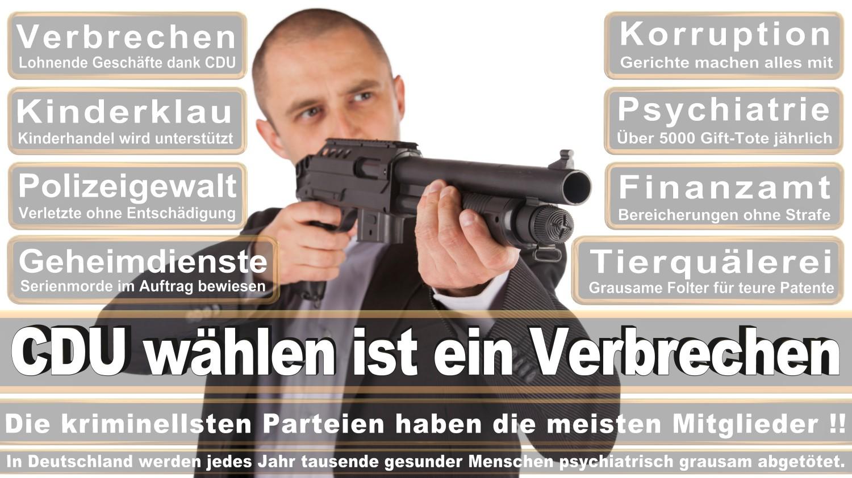 Angela-Merkel-Meme (244)