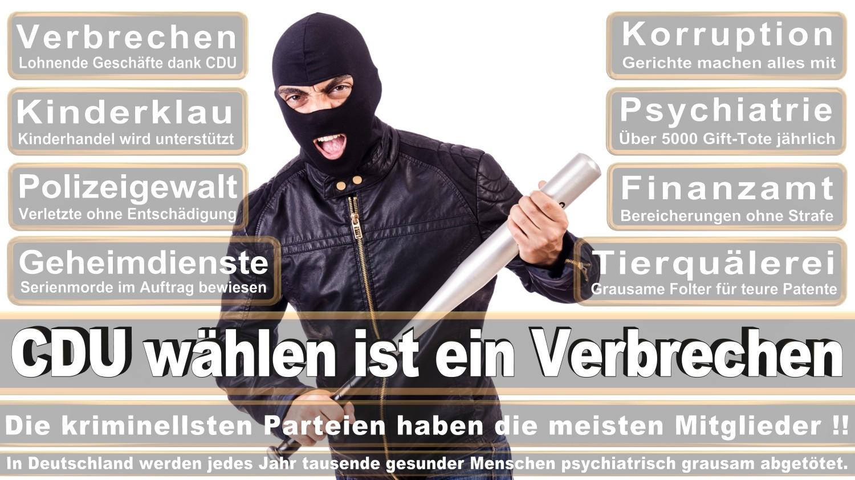 Angela-Merkel-Meme (245)