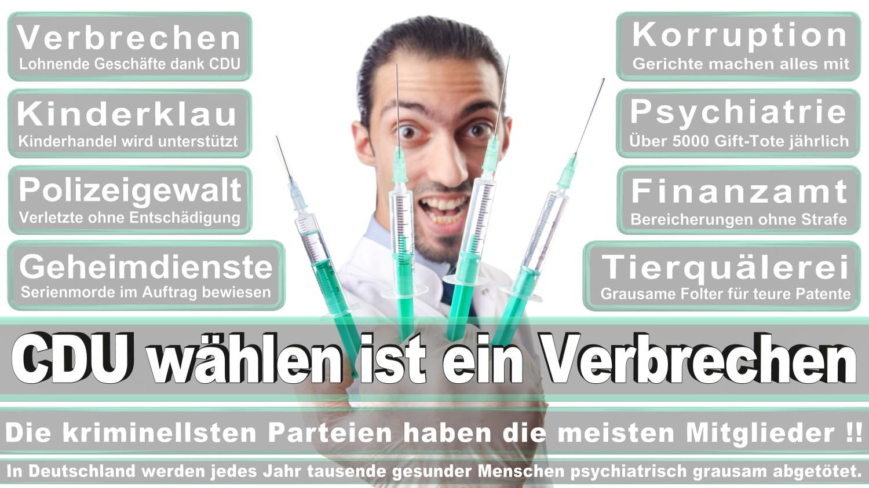 Angela-Merkel-Meme (246)